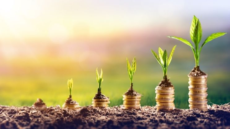 Success Formulas for Investing